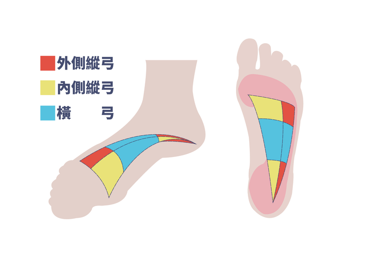 three arch of foot